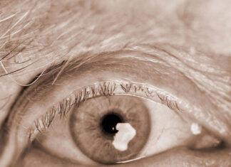 Opieka osób starszych to coraz popularniejszy zawód